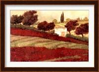Framed Apapaveri Toscana I