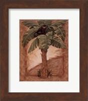 Framed Monkey Palm I