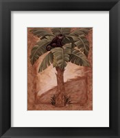 Framed Monkey Palm I