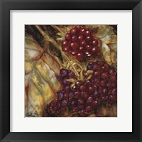 Framed Ripening Berries