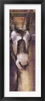 Framed Animal Veld I