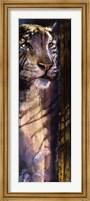 Framed Animal Veld II