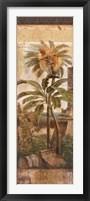 Framed Antilles II