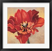 Framed Tulipan One