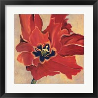Framed Tulipan Two