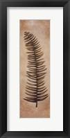 Framed Ferns Palms IV