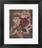 Framed Vintage Rose II (Sm)