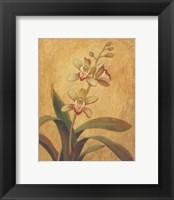 Framed Orchid In Landscape I
