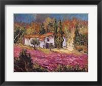 Vineyards In Provence I Framed Print
