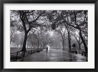 Framed Poet's Walk, New York City