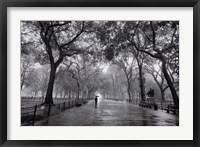 Framed Poet's Walk, New York City