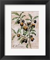 Framed Olives