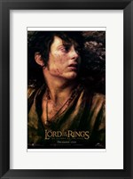 Framed Lord of the Rings: Return of the King Frodo