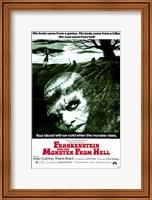 Framed Frankenstein and the Monster from Hell