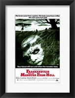 Framed Frankenstein and the Monster from Hell