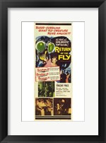 Framed Return of the Fly