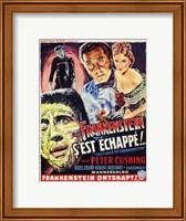 Framed Curse of Frankenstein