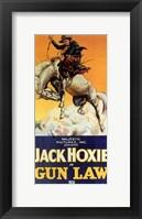 Framed Gun Law
