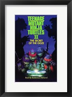 Framed Teenage Mutant Ninja Turtles 2