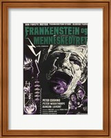 Framed Evil of Frankenstein