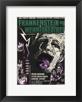 Framed Evil of Frankenstein