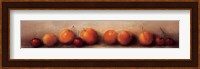 Framed Apricots and Cherries