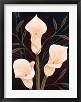 Framed Botanical Elegance II