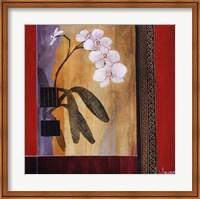 Framed Orchid Lines I