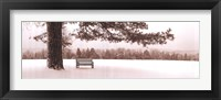 First Snow II Framed Print