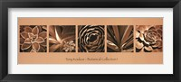 Botanical Collection I Framed Print