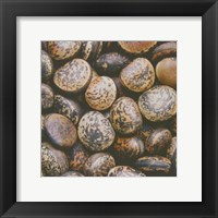 Framed Pebble Textures