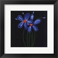 Petite Bleu Framed Print