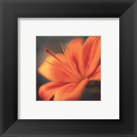 Framed Orange on Turquoise