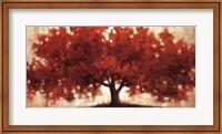 Framed Spreading Crimson