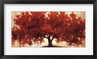 Spreading Crimson Framed Print