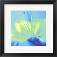 Impression Lily Framed Print