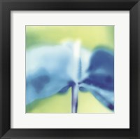 Framed Blue Indigo