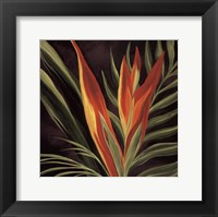 Framed Birds of Paradise II