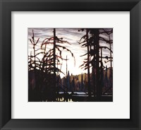 Beaver Swamp Framed Print