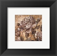 Framed Antique Rose II