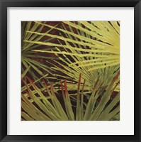 Framed Three Palms, Panel A