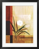 Framed Single White Flower