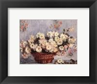 Framed Basket of Chrysanthemums, c.1878