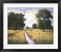 Framed Meadow
