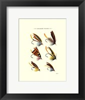 Framed Salmon Flies I