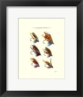 Framed Salmon Flies II