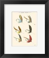 Framed Lake Flies II