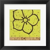Framed Key Lime Rosette IV