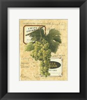 Framed Small White Grapes II