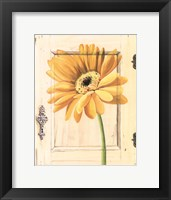 Framed Daisy Door